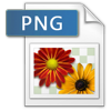 png icon 100