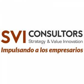 SVI consultors